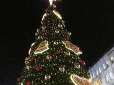 Рождественская ель на Вацлавской площади, Фото: Катерина Айзпурвит, Чешское радио - Радио Прага