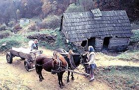 Gernik, photo: www.etf.cuni.cz
