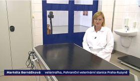 Markéta Bernášková, foto: ČT