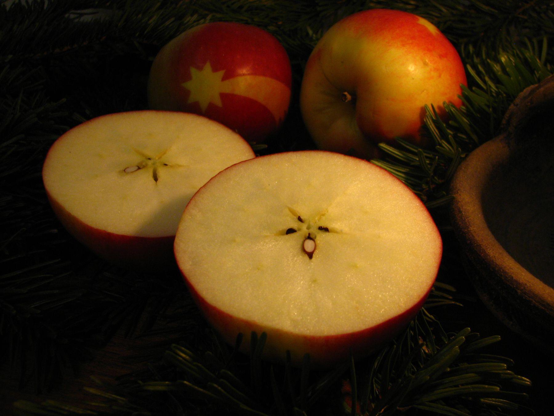 Gedicht Weihnachtsgebäck.Tschechisches Weihnachtsgebäck Die Schönste Versuchung In Der