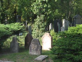 Еврейская часть Ольшанского кладбища в районе Страшнице (Фото: Кристина Макова)