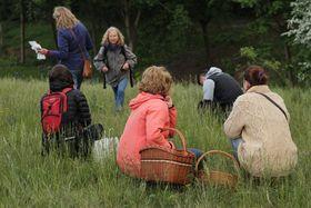 La ramassage de fleurs, photo: Vendula Šefrnová