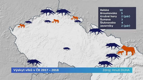 Occurrence of wolves in the Czech Republic (2017-2018), source: Archive of Hnutí Duha / ČT24