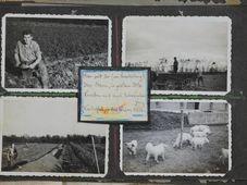 Ausstellung 'Sophies Entscheidung auf Tschechisch' (Foto: Archiv des Tschechischen Zentrums Wien)