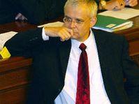 Premiér Vladimír Špidla, foto: ČTK