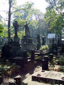 Powązki-Friedhof (Foto: Hubert Śmietanka, CC BY-SA 2.5)