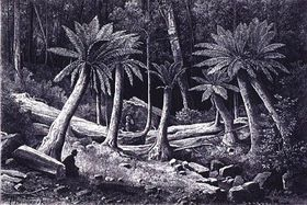 Buchillustration von Bedřich Havránek