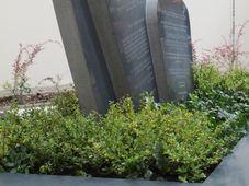 Памятные плиты на еврейском кладбище, Фото: Мартина Шнайбергова, Чешское радио - Радио Прага