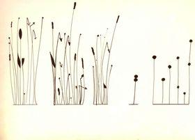 'Zvuky Kódy Obrazy, akustický experiment ve vizuálním umění', photo: GHMP