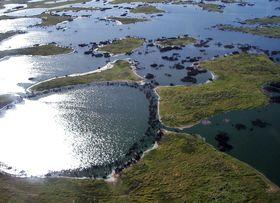 Pantanal, foto: Alicia Yo /  CC BY-SA 3.0