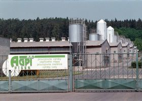 Pig farm in Lety, photo: CTK