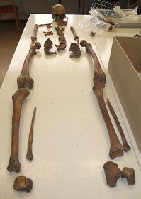 Zkoumané kosterní pozůstatky, foto: Martina Bílá
