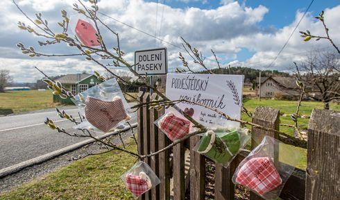Photo: ČTK/Radek Petrášek