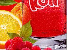 Фото: официальный сайт компании Sodovkárna Kolín