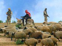 Irak, foto: CTK