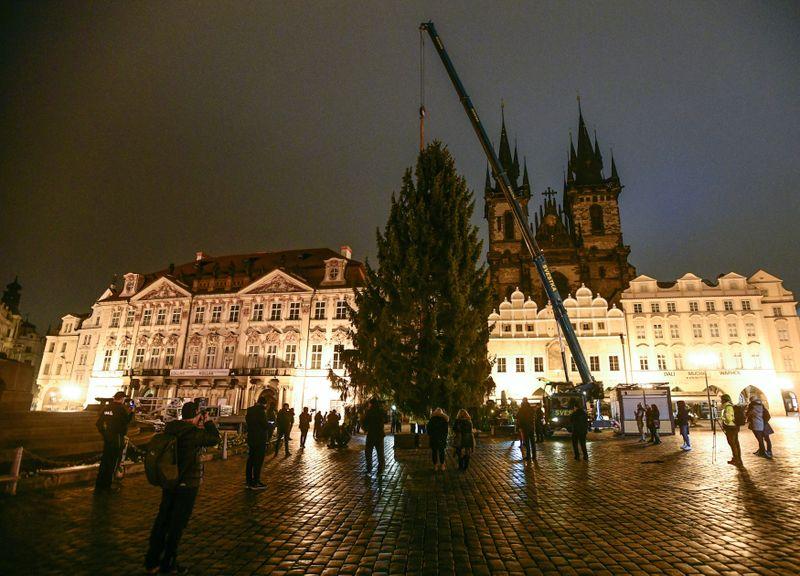 Установка рождественской елки на Староместской пл. в Праге, фото: ЧТК/Вондроуш Роман