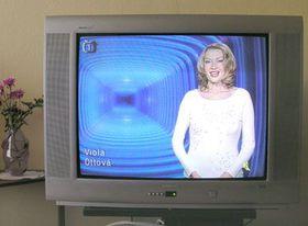 Televizní hlasatelka Viola Ottová