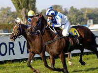 Maskul ridden by  Dirk Fuhrmann (ahead), photo: CTK