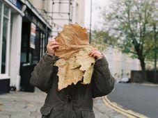 Ilustrační foto: Laura Thorne, Flickr, CC BY-NC-ND 2.0