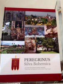 Peregrinus Silva Bohemica (Foto: Martina Schneibergová)