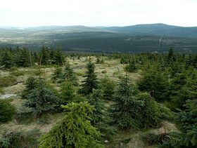 Isergebirge (Foto: Barbora Kmentová)