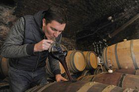 Bzenec chateaux winery, photo: CTK