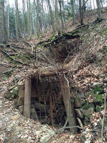 Cave entrance today, photo: Lubomír Smatana / Czech Radio