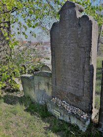 Grab von Jakob Bassevi (Foto: Maria Hammerich-Maier)