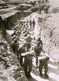 Häftlinge in Mauthausen (Foto: United States Holocaust Memorial Museum)