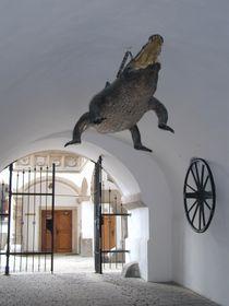 Le dragon de Brno, photo: Jana Šustová