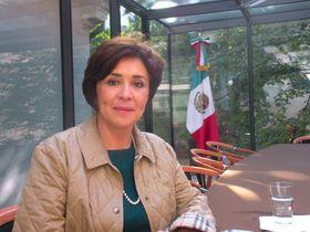 Silvia Navarrete, foto: Daniel Ordóñez