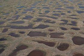 Permafrostboden (Illustrationsfoto: United States Geological Survey, Public Domain)