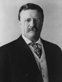 Theodore Roosevelt (Foto: Archiv United States Library of Congress, Free Domain)