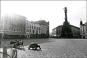 Olomouc, photo: Štěpánka Budková