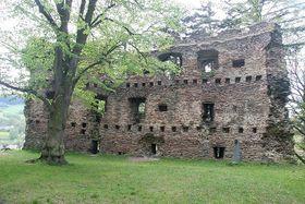 Les ruines du château de Dalecin, photo: Prazak / Creative Commons 3.0 Unported