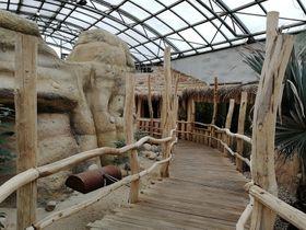 Zoo Dvůr Králové, foto: Jiří Drábek, Wikimedia Commons, CC BY-SA 4.0