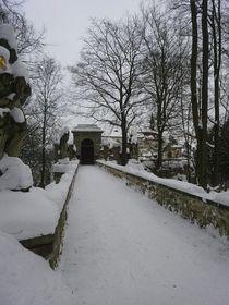 Le château fort de Wallenstein (Valdštejn), photo: Jaroslava Gregorová