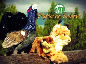 Photo: archive of Šumava National Park
