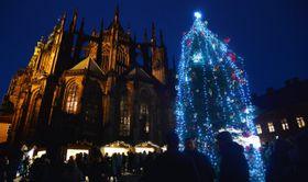 Рождественская елка, Пражский град. Фото: ЧТК