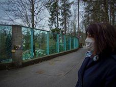Zoo de Liberec, foto: ČTK/Petrášek Radek