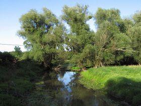 La réserve de Soutok, photo: RomanM82, CC BY-SA 3.0 Unported