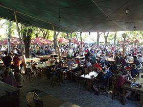 Photo: www.restauraceriegrovysady.cz