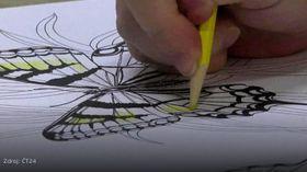«Антистрессовые» раскраски, Фото: ЧТ24