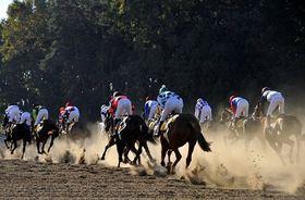 La 120e édition restera dans les annales pour n'avoir fait aucune victime mortelle chez les chevaux, photo: CTK