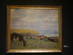 Karel Špillar, 'Le paysage de Bretagne', photo de l'exposition: Magdalena Hrozínková