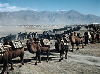 'Road leads to Tibet', photo: © Dech hor / NFA