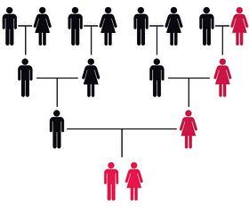 Schéma dědičnosti mitochondriální DNA , foto: Jordi picart / CC BY-SA 4.0