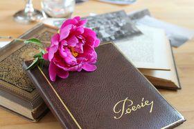 Illustrationsfoto: Lolame, Pixabay / CC0