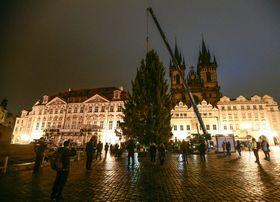 Weihnachtsbaum auf dem Altstädter Ring (Foto: ČTK / Roman Vondrouš)