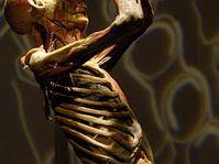 Bodies, photo: CTK